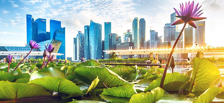 Cingapura colocou seu legado cultural de limpeza à prova durante a pandemia de covid-19 - Getty Images