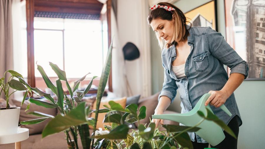 Dicas para cuidar das plantas - Getty Images