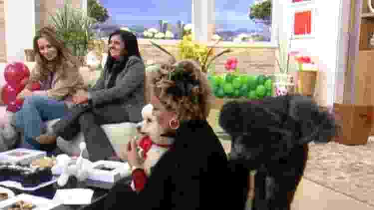 Cachorro faz xixi em Ana Maria Braga durante o Mais Você - Reprodução/Globo