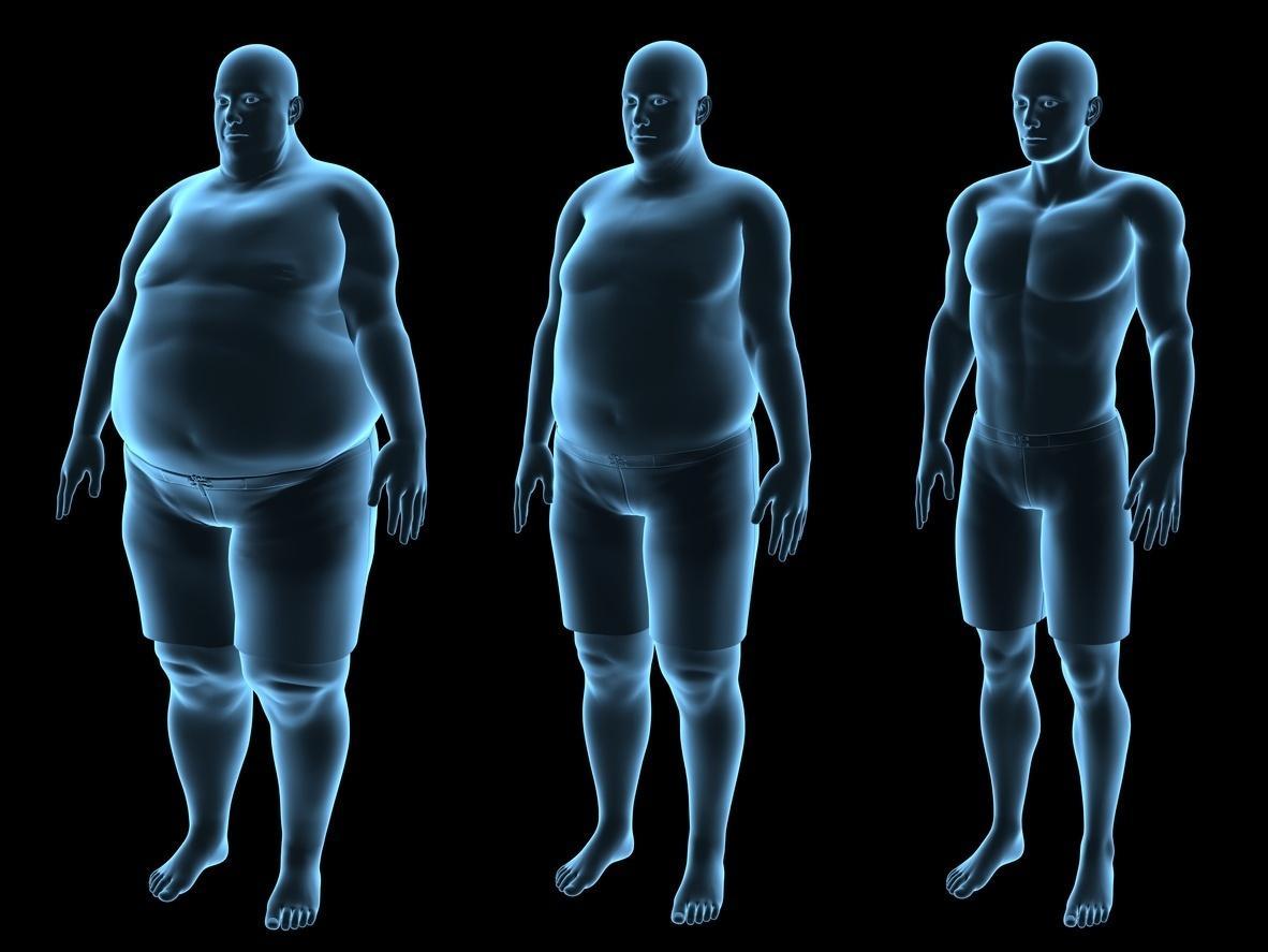 Insulina: entenda o que é, qual a sua função e como ela age