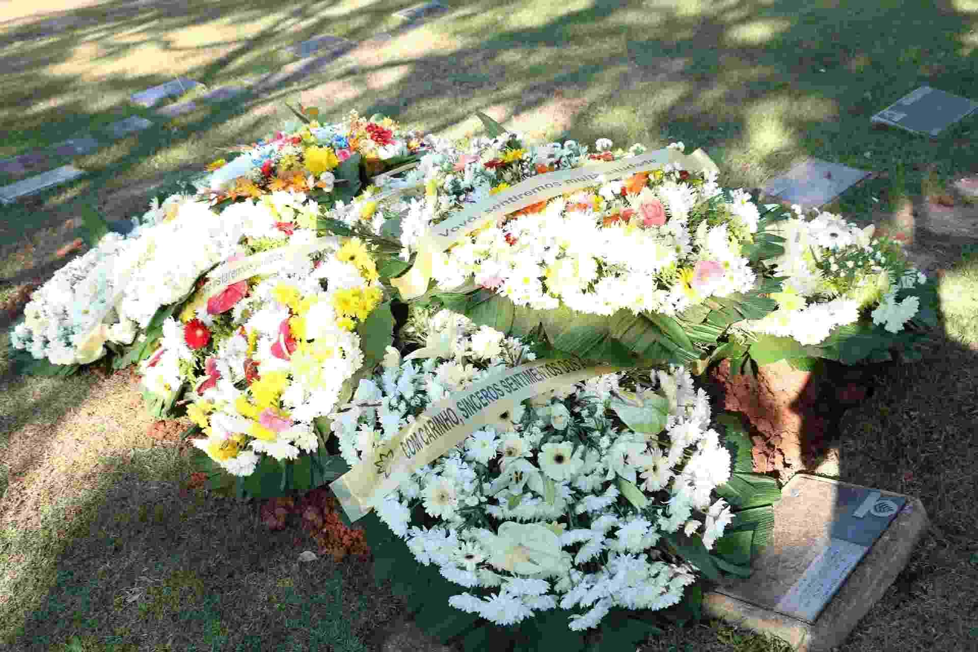 Saccomani morreu aos 71 anos, depois de problemas renais - AgNews