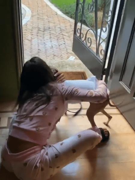 Anitta reencontra Plínio em Miami (EUA) - Reprodução/Twitter
