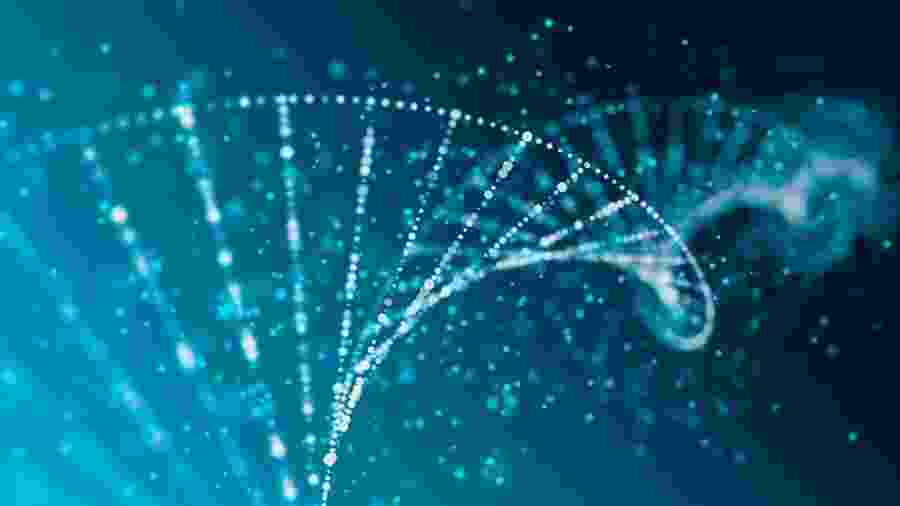 DNA pode conter mais informações do que apenas características físicas de espécies - iStock