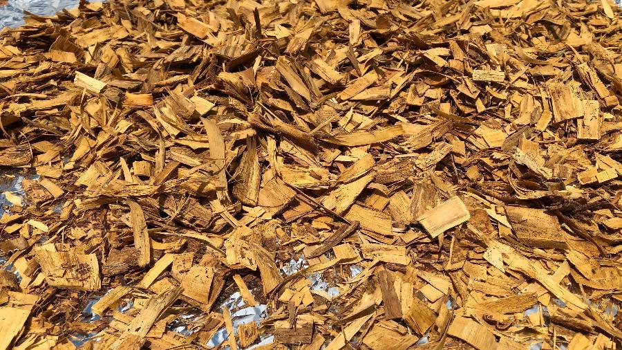 Cortiça de quina vendida pelo Doutor Raiz, em Rio Branco (AC) - Arquivo Pessoal