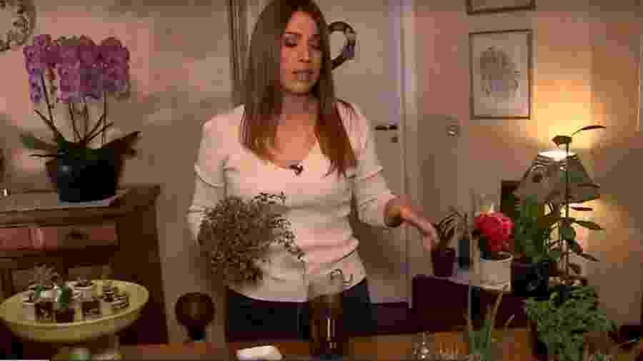 Ananda Apple mostra coleção de suculentas e como plantar alimentos em casa - Reprodução/TV Globo