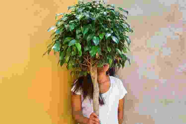 plantados mulher escondida atrás de árvore - Getty Images - Getty Images