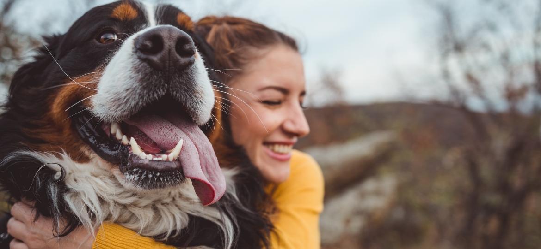 Melhores amigos do homem, cães são super ligados ao dono e reagem com o corpo - Getty Images