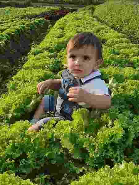 Vitor Leonardo, 1 ano - Arquivo pessoal - Arquivo pessoal