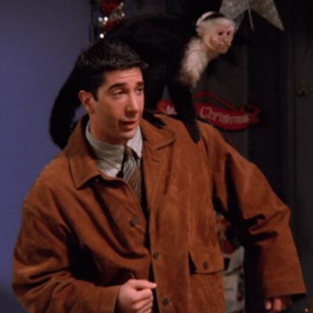 """Ross e o macaco Marcel em cena de """"Friends"""" - Reprodução"""