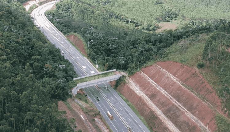 Viaduto sobre a Rodovia dos Tamoios (SP-99), no estado de São Paulo. - Concessionária Tamoios/Divulgação - Concessionária Tamoios/Divulgação