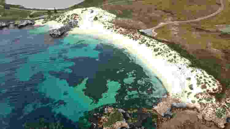 Ilha Rottnest, na Austrália - Divulgação/Tourism Australia - Divulgação/Tourism Australia