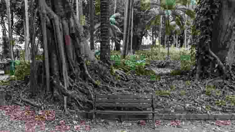 Os bancos do Parque da Luz, sempre ocupados por prostitutas, estão vazios por causa da covid-19 - Gui Christ