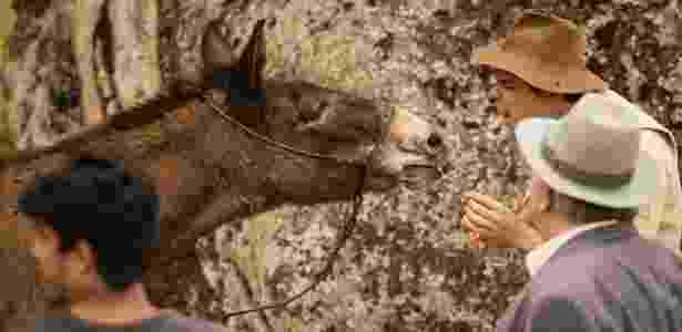 """Das vantagens de ser uma estrela: nos bastidores de """"Êta Mundo Bom"""", Juca é paparicado por seu """"coadjuvante"""" Sergio Guizé e ganha cenouras - João Cotta/Globo - João Cotta/Globo"""