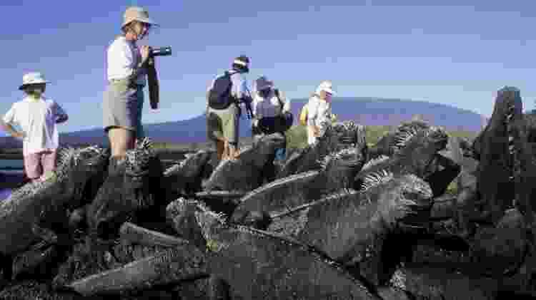 Você pode querer ir a Galápagos para admirar a natureza e a vida selvagem - mas já pensou no impacto da sua visita? - GETTY IMAGES