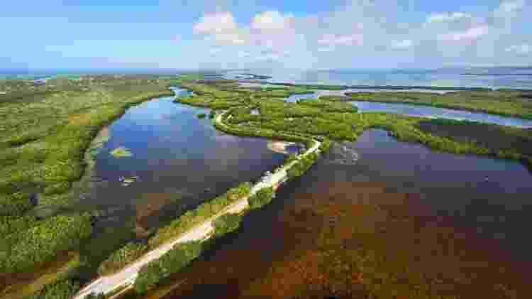 Vista aérea do J.N. Ding Darling National Wildlife Refuge - Divulgação/Visit Florida - Divulgação/Visit Florida