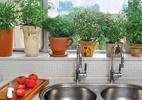 Aprenda a ter uma horta em casa - Divulgação/ It mãe