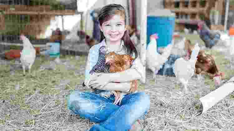 Zooterapia galinhas - iStock - iStock