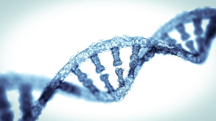 Técnica de sequenciamento do DNA permite obter diagnósticos precisos - iStock