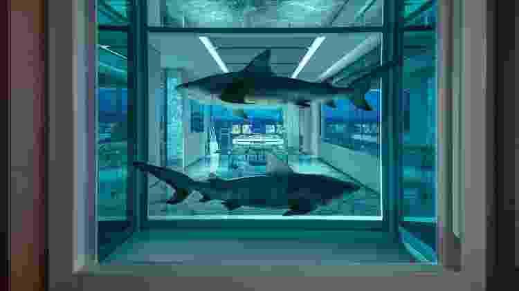 Um tanque com dois tubarões de verdade faz parte da decoração da Empathy Suite - Divulgação/Palms Casino Resort - Divulgação/Palms Casino Resort