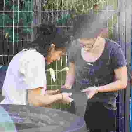 Sócias buscam câmaras de pneus descartados em borracharias  - Divulgação