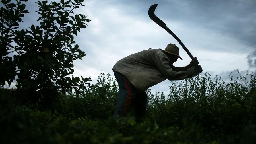 Francisco Rodriges dos Santos trabalhou em condições análogas à escravidão no Piauí - Mario Tama/Getty Images