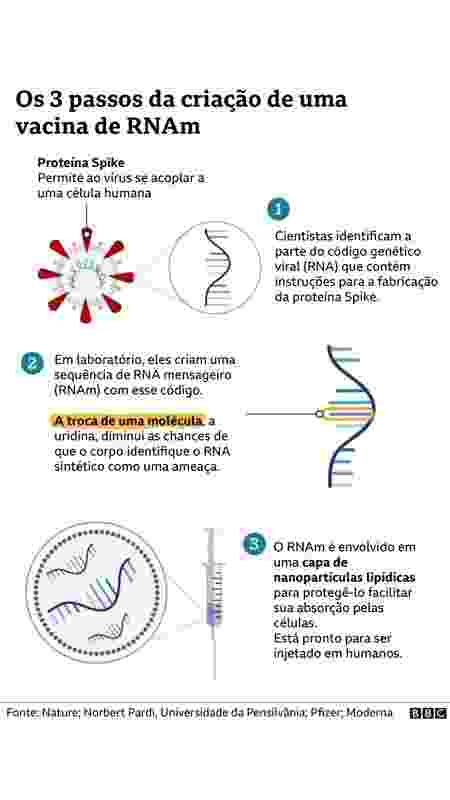 três passos da criação da vacina de RNA - BBC - BBC