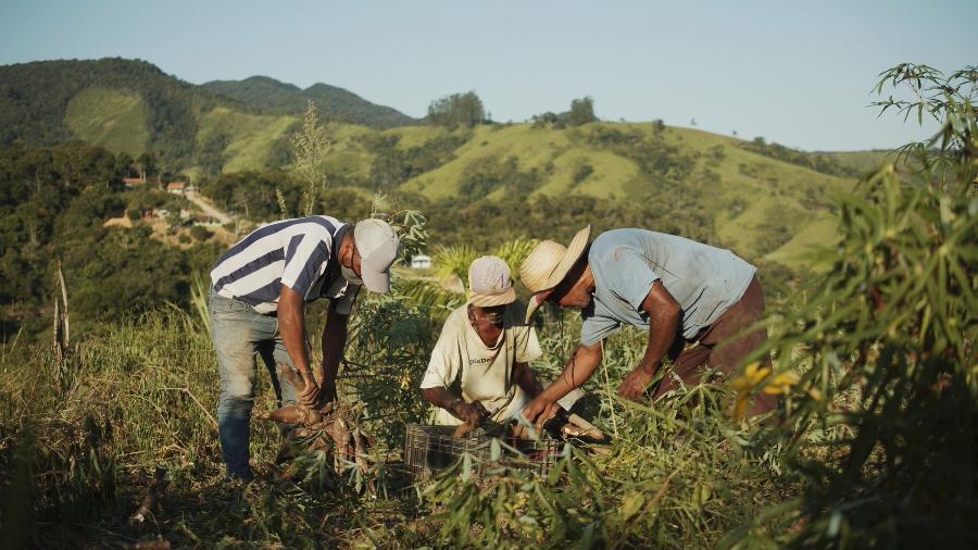 Quilombolas do Vale do Ribeira distribuem alimentos a comunidades de SP - Manoela Meyer/ ISA