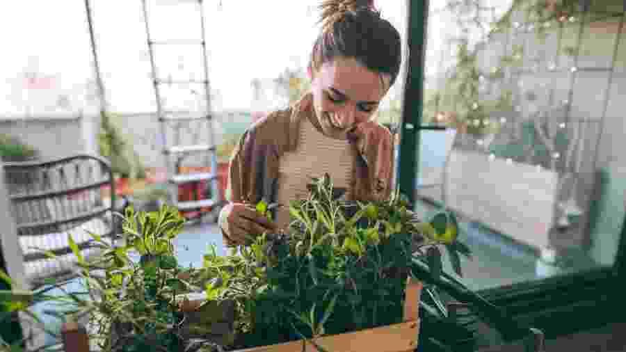 Com coragem, nascem os jardineiros apaixonados, os paisagistas mais criativos e os amantes das plantas que se inspiram na natureza para cuidar melhor de seu jardim - Getty Images