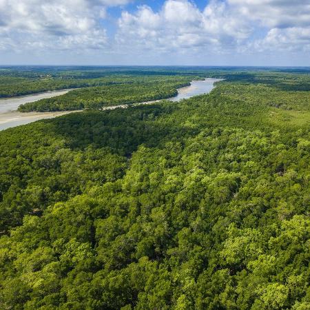 Amazônia vista do alto - Ricardo Lima/Getty Images