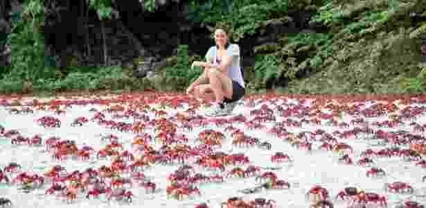 Christmas Island e os carangueijos - Xinhua/Xu Yanyan - Xinhua/Xu Yanyan