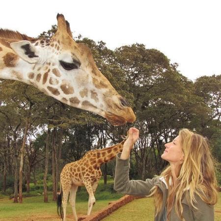 Gisele Bündchen alimenta uma girafa - Reprodução/ Instagram @gisele