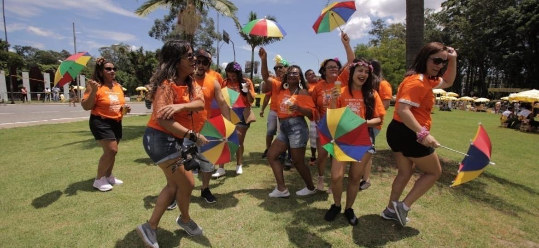 Foliões dançam frevo no Ibirapuera durante passagem dos blocos Frevo Mulher e Bicho Maluco Beleza - André Lucas/UOL