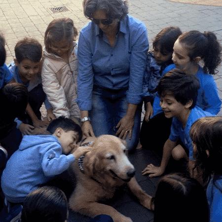 Pets na escola - Os animais recebem carinhos, cuidados e atenção - Divulgação - Divulgação