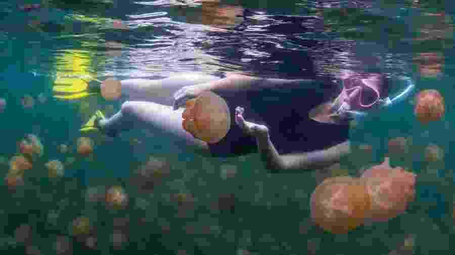 Turistas podem viver esta experiência no paradisíaco arquipélago de Palau - Global_Pics/Getty Images