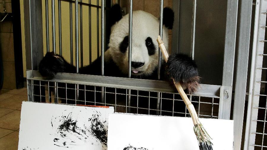 A panda Yang Yang vive no Schönbrunn Zoo - Heinz-Peter/Reuters