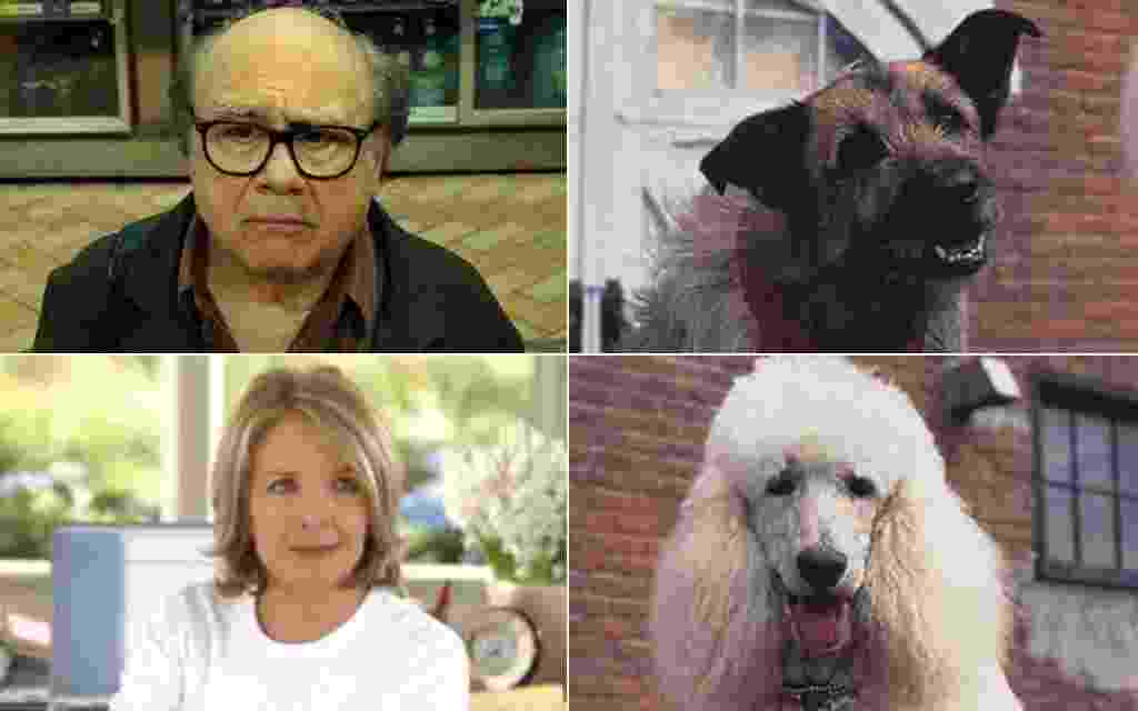 """Danny DeVito e Diane Keaton dublaram as vozes dos cães Rocks e Daphne """"Olha Quem Está Falando Agora"""" (1993) - Reprodução"""