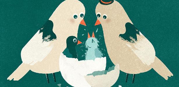 Diferença entre gêmeos ajuda a entender como ambiente afeta o comportamento