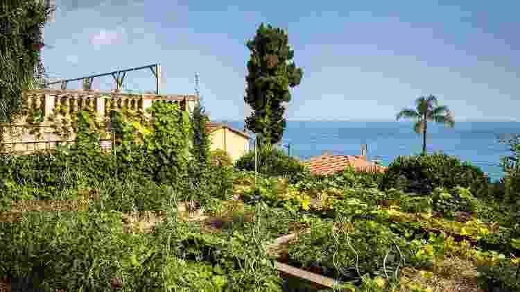 """No """"quintal"""" do Mirazur, horta cheia de filosofia e amor pela comida - Matteo Carassale - Matteo Carassale"""