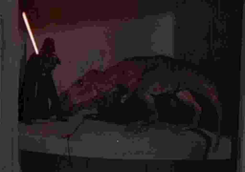 """Cena de """"A Chave Mágica"""" (1995) - Reprodução"""