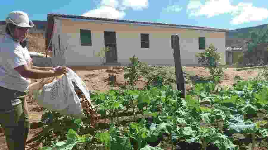 Quintal de Sidinalia, na comunidade de Tesouras - CPCD