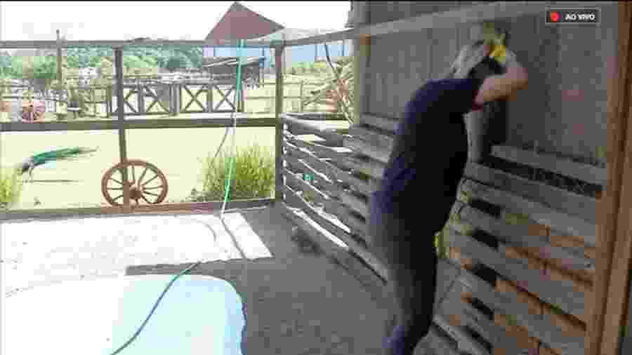 Thayse Teixeira tem dificuldade em realizar tarefa com as aves - Reprodução/Playplus