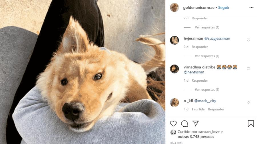 """""""Unicórnio em pleno efeito"""", diz a legenda da foto no perfil de Rae - Reprodução/Instagram"""