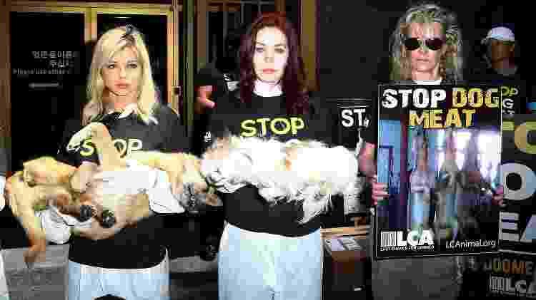 As atrizes Priscilla Presley (centro) e Kim Basinger (dir.) fazem protesto em Los Angeles - Frederick M. Brown/Getty Images - Frederick M. Brown/Getty Images