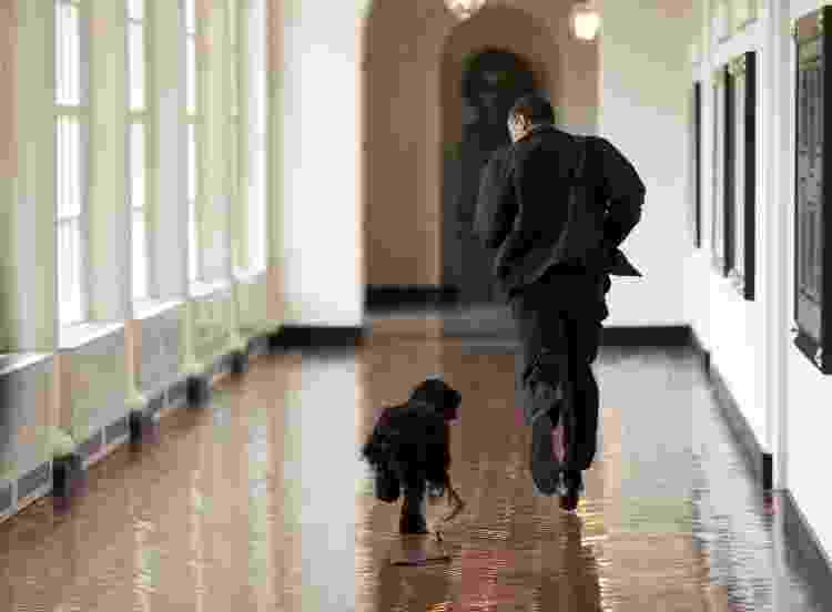 12.abr.2009 - O presidente dos Estados Unidos, Barack Obama, corre com Bo por um corredor na Casa Branca - Pete Souza/The White House/AFP - Pete Souza/The White House/AFP