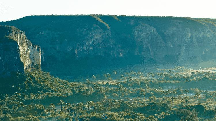 Cerrado é bioma que agrupa boa parte do território nacional, com dezenas de etinas e comunidades. Mas o que você sabe sobre ele? - Bento Viana/WWF Brasil/Divulgação - Bento Viana/WWF Brasil/Divulgação