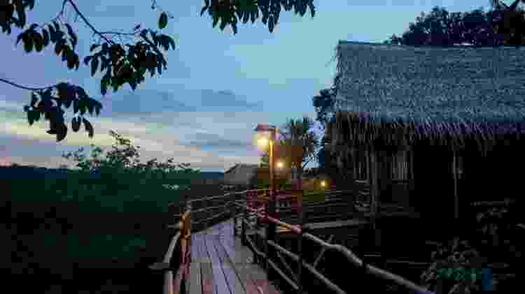 Tariri Amazon Lodge - Divulgação - Divulgação