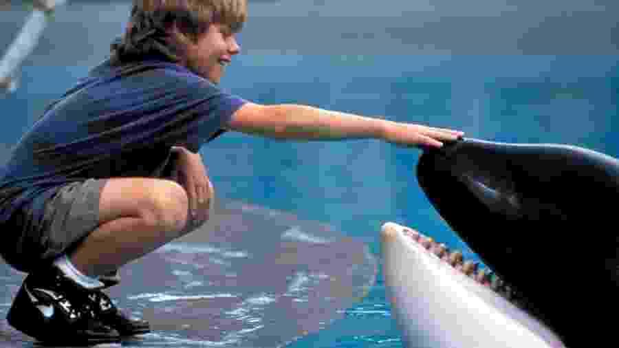 """Cena do filme """"Free Willy"""" (1993), de Simon Wincer - Reprodução"""