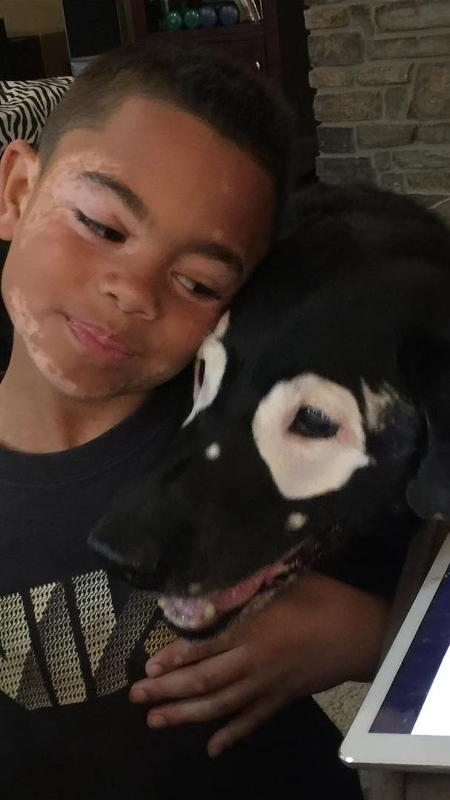 O garoto Carter Blanchard e o labrador Rowdy - Reprodução/Instagram