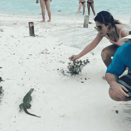 Tatá Werneck levou um susto com iguana - Reprodução/Instagram/tatawerneck