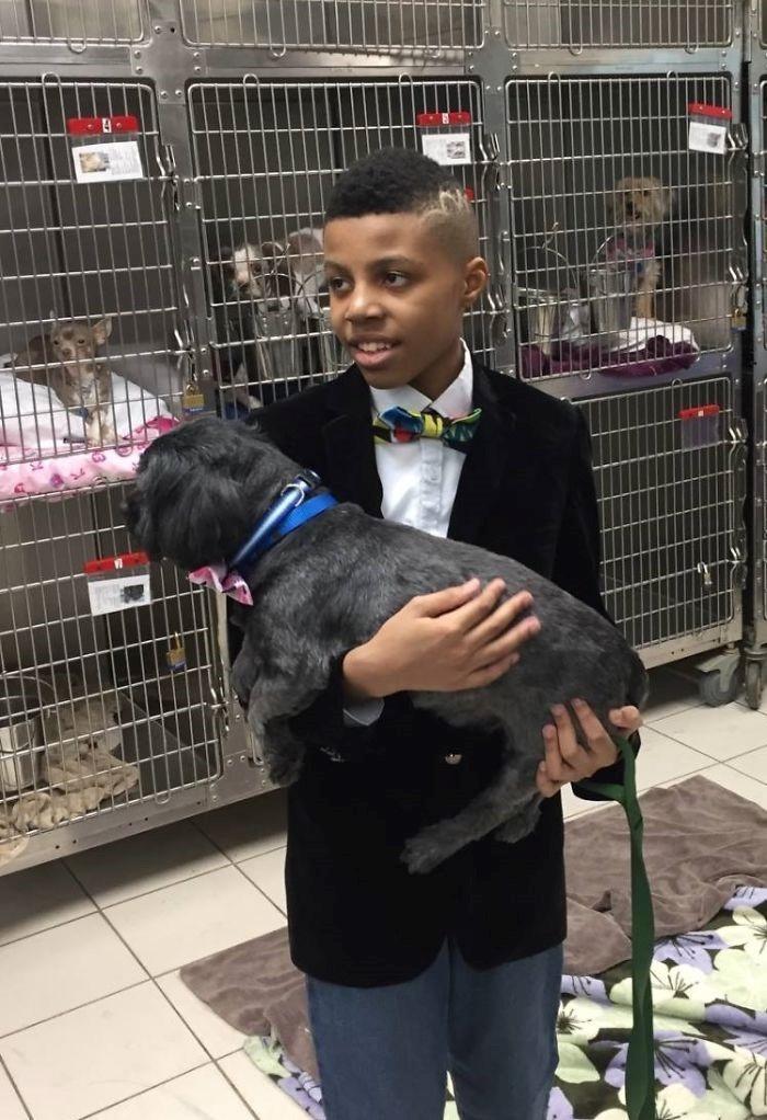 Garotinho de 12 anos produz gravatas para ajudar animais a acharem um lar